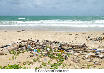 Dirty beach - Dirty garbage on the beach causes...