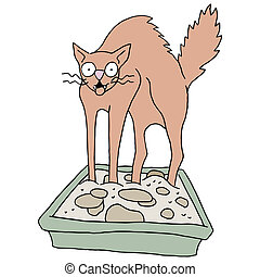 Dirty Cat Litter Box - An image of a cat in a dirty litter...