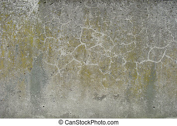 dirty gray brown curry worn wall