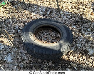 Dirty old rubber tires in forest. Illegal