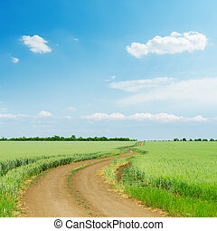 dirty road in green agriculture field and blue sky with clouds over it