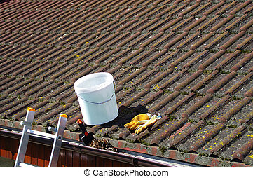 Dirty roof tiles and gutter requiring cleaning
