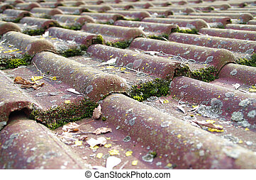 Dirty roof tiles requiring cleaning