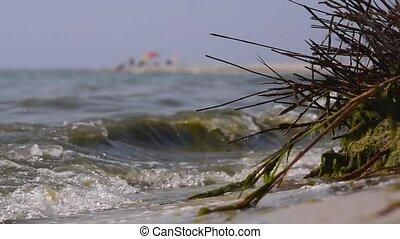 Dirty sea water. Green sea water. Ecology. Murky sea water....