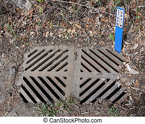 Dirty Storm Drain with Sign