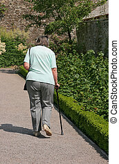 Elderly female walking alone on a garden path with a walking stick, with fruit bushes and a low hedge to one side. Rear view.
