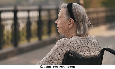 Disable senior woman sit on wheelchair at park