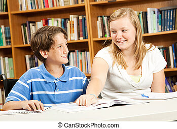 Disabled Boy with Teen Tutor