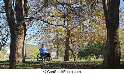 woman on wheelchair - Disabled senior woman on wheelchair in...