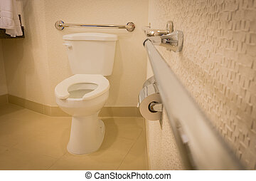 disabled toilet bathroom with bars