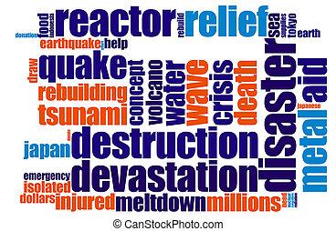 Disaster word cloud