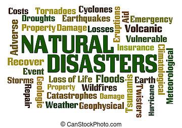 disastri naturali
