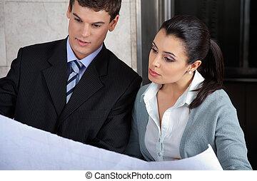 discuter, plan, cadres affaires