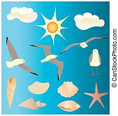 diseños, conchas marinas, vectors, gaviotas