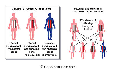 Disease inheritance 3