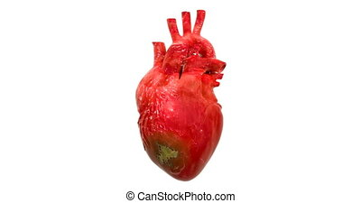 Disease spread on heart, 3d animation. 3D rendering isolated...