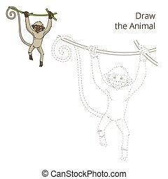 disegnare, scimmia, educativo, gioco, vettore, animale