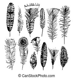 disegnato, feathers., mano