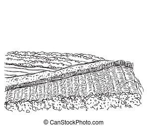 disegnato, fields., paesaggio, mano