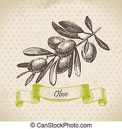 disegnato, olive., illustrazione, mano