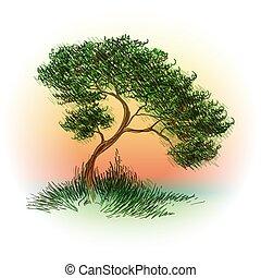 disegnato, schizzo, albero, stile