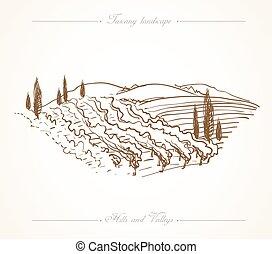 disegnato, toscana, paesaggio, illustrazione, mano