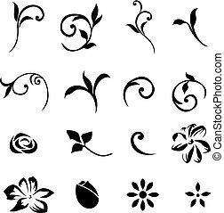 disegni elementi, floreale, set, 01