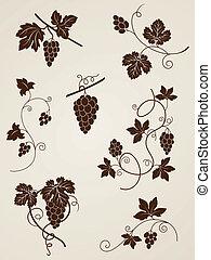 disegni elementi, vite, uva