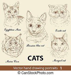 disegno, 1, set, mano, gatti