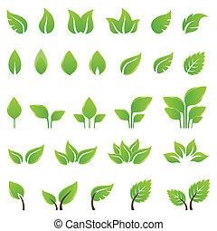 disegno, foglie, set, verde, elementi