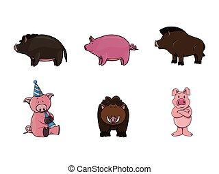 disegno, porco, illustrazione