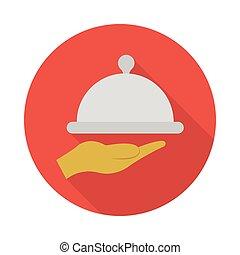 dish flat icon