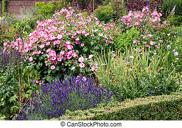 Display of assorted flowers in an english country garden