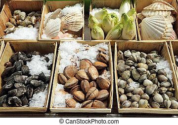 Display of shellfish , Brussels, Belgium