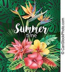 disposizione, da, fiori tropicali