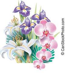 disposizione, da, fiori