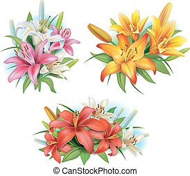 disposizione, da, gigli, fiori