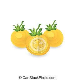disséquer, tomate, icône, couleur, jaune