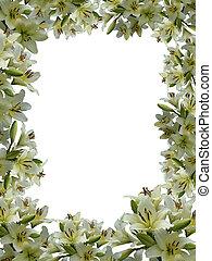 framework from flowers - Dissymmetric framework from flowers...