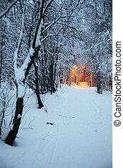 distance, hiver, lanternes, lumière, parc, rue, sentier