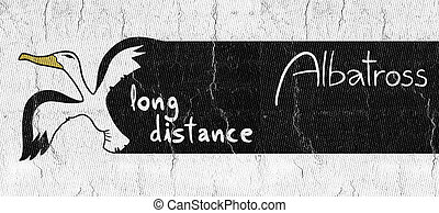 distance, message, long
