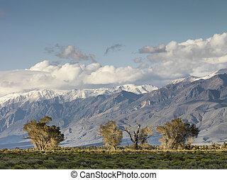 distance view of mountain range