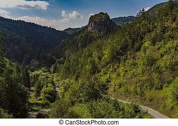 Distance view on the Ravna stena (Flat rock) of mountain Tara in Serbia