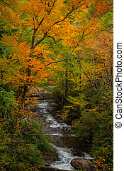 Distant Bridge Surrounded By Towering Fall Colored Trees
