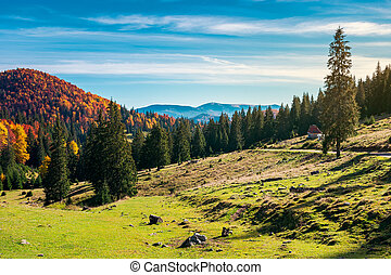 distant mountain in fall colors on a sunny day - wonderful...