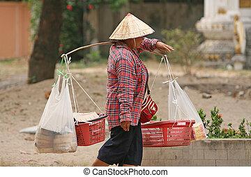 distribuidor de comida