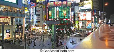 distrito, panorama, tokio, japonés, activo, noche, japón