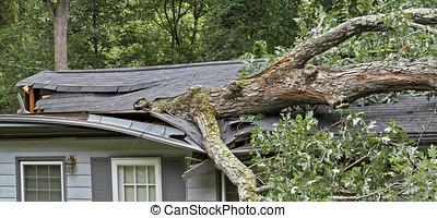 distruggere, casa, albero, tetto, fells, tempesta