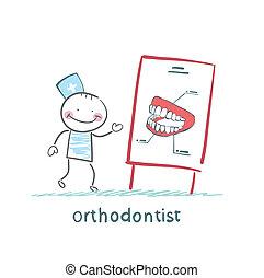 dit, sur, présentation, orthodontiste, dents