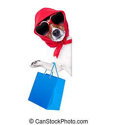 diva, shopaholic, compras, perro